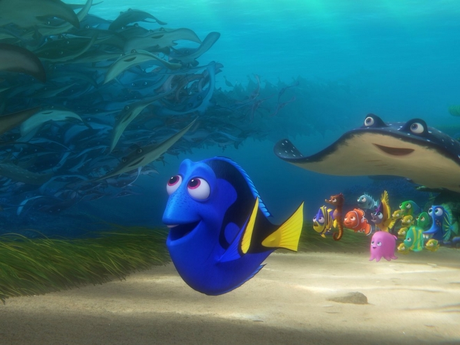 47. Finding Dory